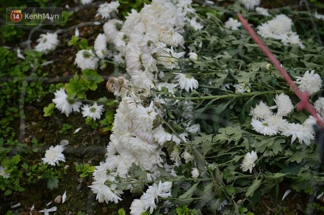 Nông dân Tây Tựu nuốt nước mắt, nhổ hoa vứt bỏ đầy đồng vì ế không bán được - Ảnh 17.