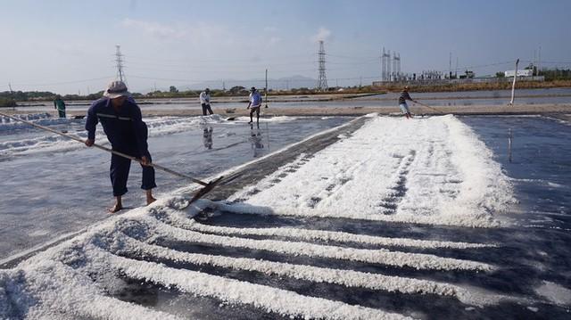 Cận cảnh nghề gieo nước biển đầu năm ở phương Nam - Ảnh 2.