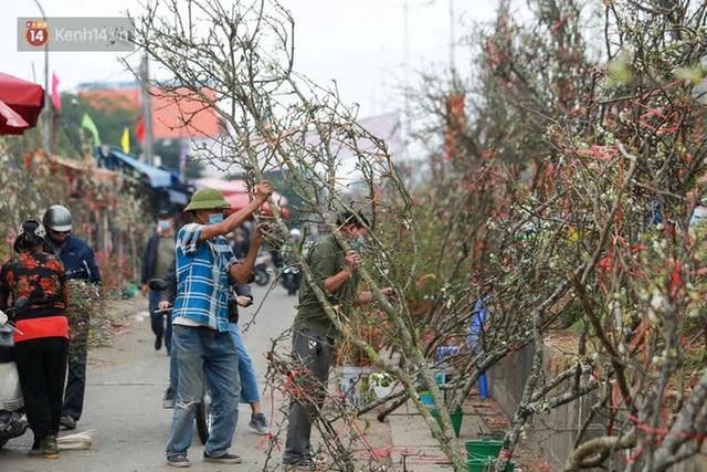Ảnh: Hàng trăm người dân Hà Nội đổ xô đi mua hoa lê về chơi Rằm tháng Giêng - Ảnh 13.
