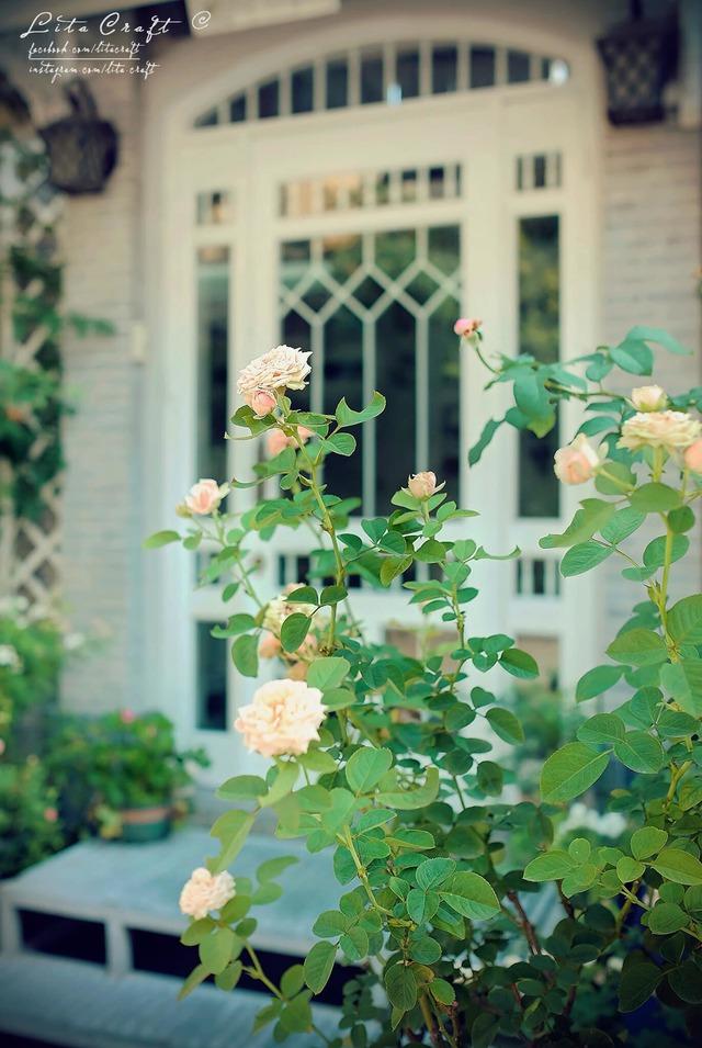 Ngôi nhà mộng mơ đẹp như phim ảnh của cặp vợ chồng trẻ Sài Gòn - Ảnh 14.