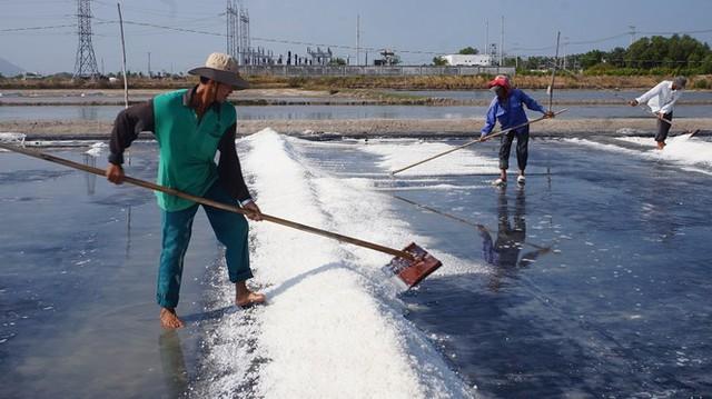Cận cảnh nghề gieo nước biển đầu năm ở phương Nam - Ảnh 6.