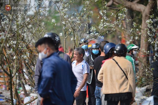 Ảnh: Hàng trăm người dân Hà Nội đổ xô đi mua hoa lê về chơi Rằm tháng Giêng - Ảnh 9.