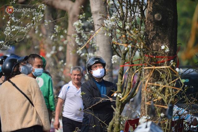 Ảnh: Hàng trăm người dân Hà Nội đổ xô đi mua hoa lê về chơi Rằm tháng Giêng - Ảnh 10.