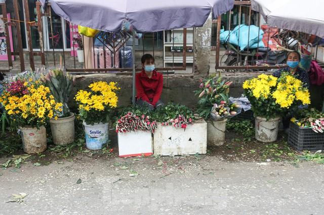 Rằm tháng Giêng, làng Tây Tựu lo sốt vó vì hoa ế ẩm - Ảnh 1.