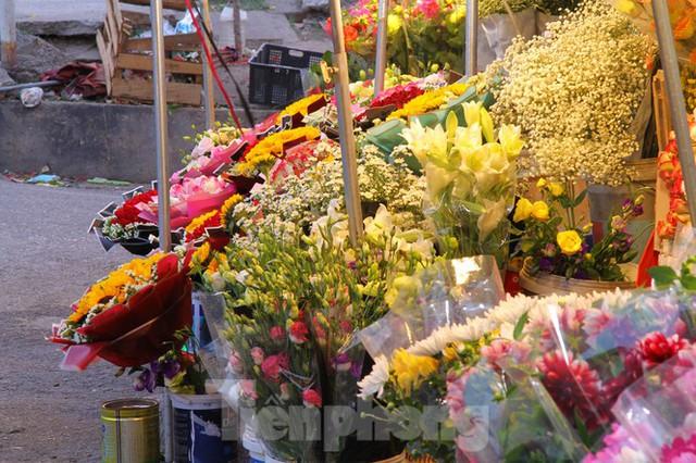Hoa tươi sau Tết ở Hà Nội rớt giá thê thảm chưa từng thấy - Ảnh 3.