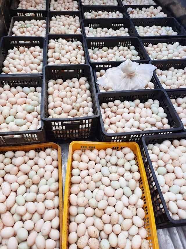 Bỏ xó cả chục ô tô bạc tỷ, ông chủ showroom đi bán ngô và trứng gà, giải cứu nông sản Hải Dương - Ảnh 5.