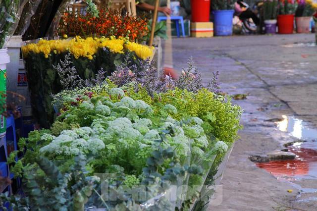 Hoa tươi sau Tết ở Hà Nội rớt giá thê thảm chưa từng thấy - Ảnh 6.
