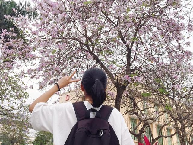 Ở Hà Nội có 1 trường đại học đẹp nhất vào mùa xuân, hoa ban nở rực khắp trời, nhưng muốn ghi danh phải xác định điểm đầu vào cao ngất ngưởng - Ảnh 6.