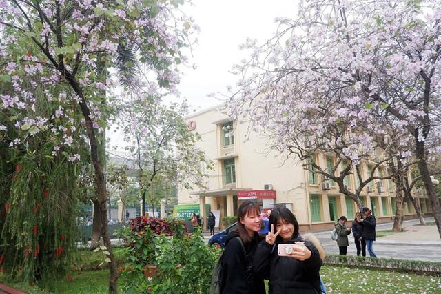 Ở Hà Nội có 1 trường đại học đẹp nhất vào mùa xuân, hoa ban nở rực khắp trời, nhưng muốn ghi danh phải xác định điểm đầu vào cao ngất ngưởng - Ảnh 8.