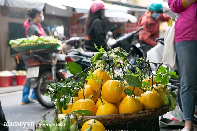 Hàng bưởi Diễn da vàng óng có từng búi hoa tươi trở thành món hàng siêu độc trên chợ nhà giàu Hà Nội, tận 100k/quả, bà chủ thu cả chục triệu mỗi ngày!  - Ảnh 13.