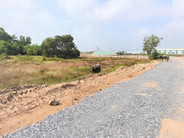 Huyện Đức Hòa, tỉnh Long An sẽ kiểm tra Dự án Hamilton Garden vì khách hàng nghi là dự án ma - Ảnh 4.