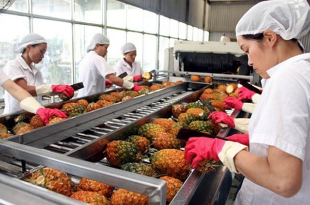 Xuất khẩu rau quả trong quý I/2021 vẫn nhiều khó khăn - Ảnh 1.