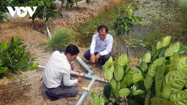 Lão nông ở Long An làm giàu từ cây lúa trên đất phèn - Ảnh 3.