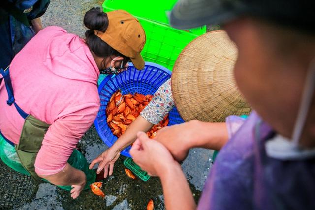 CLIP: Dịch Covid-19, chợ cá lớn nhất Hà Nội vẫn đỏ rực trước ngày cúng ông Công, ông Táo  - Ảnh 13.