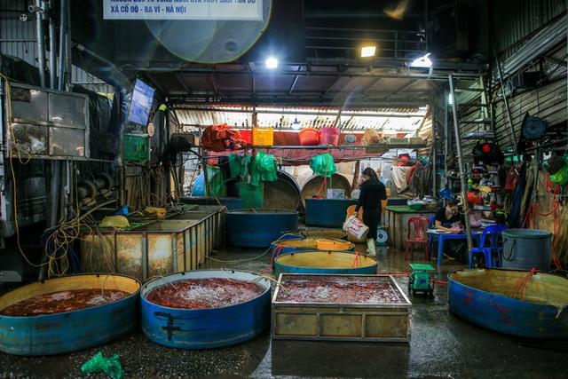 CLIP: Dịch Covid-19, chợ cá lớn nhất Hà Nội vẫn đỏ rực trước ngày cúng ông Công, ông Táo  - Ảnh 15.