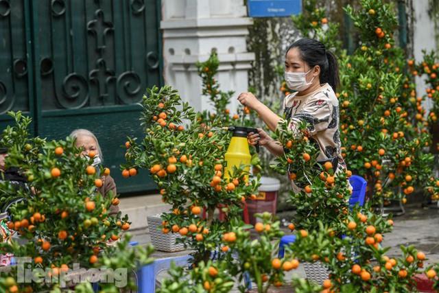Ghé thăm chợ hoa cổ nhất Hà Nội giữa mùa dịch COVID-19 - Ảnh 6.