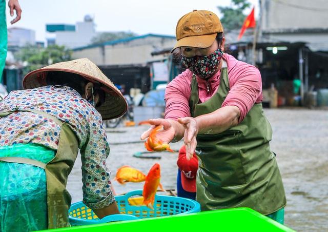 CLIP: Dịch Covid-19, chợ cá lớn nhất Hà Nội vẫn đỏ rực trước ngày cúng ông Công, ông Táo  - Ảnh 9.