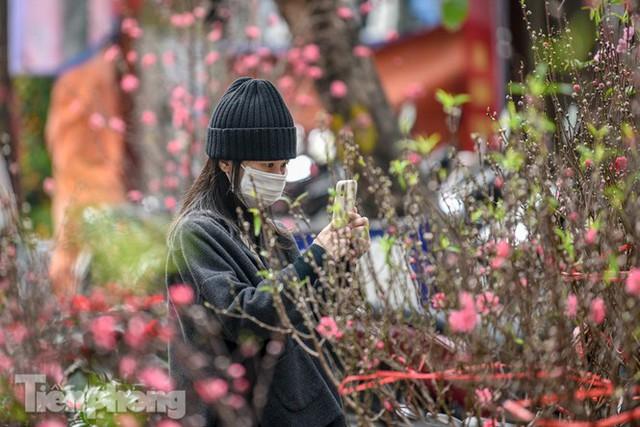 Ghé thăm chợ hoa cổ nhất Hà Nội giữa mùa dịch COVID-19 - Ảnh 8.
