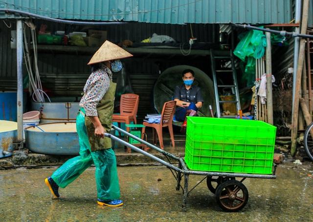CLIP: Dịch Covid-19, chợ cá lớn nhất Hà Nội vẫn đỏ rực trước ngày cúng ông Công, ông Táo  - Ảnh 10.