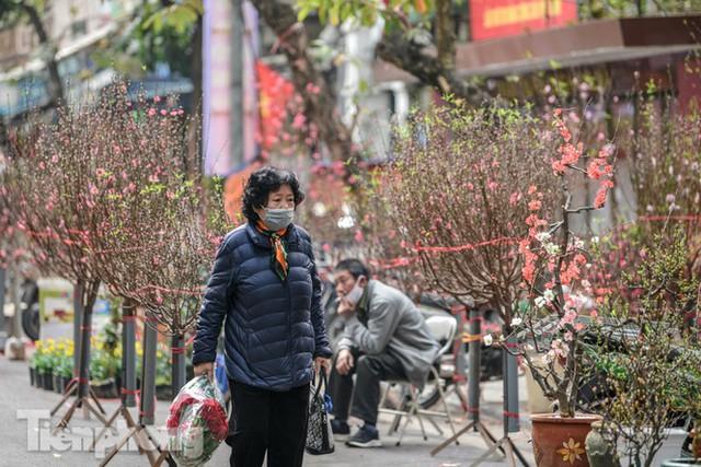 Ghé thăm chợ hoa cổ nhất Hà Nội giữa mùa dịch COVID-19 - Ảnh 9.