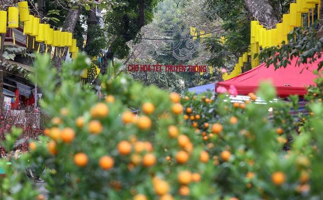 CLIP: Phố hàng Mã rực rỡ sắc đỏ hút khách ngày cận Tết Nguyên đán Tân Sửu 2021  - Ảnh 2.