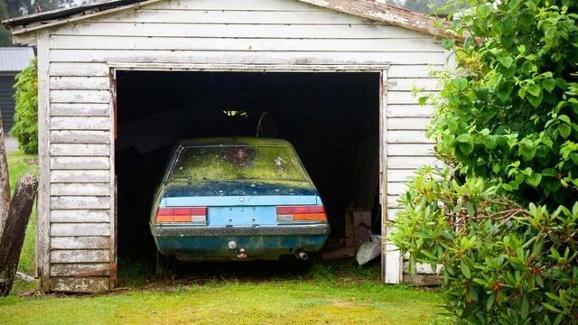 Cách loại bỏ hoàn toàn nấm mốc khỏi nội thất cho ô tô của bạn - Ảnh 1.