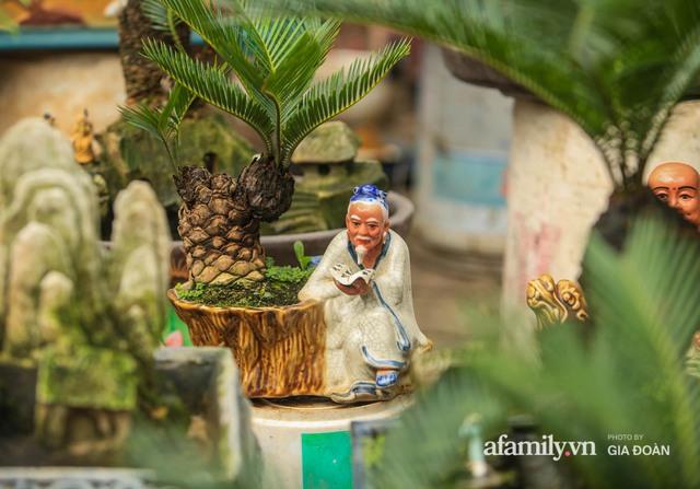 Vạn tuế bonsai của nghệ nhân Hà thành giá hàng chục triệu đồng vẫn hút khách dịp Tết - Ảnh 5.