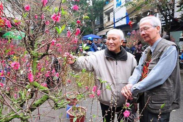 Kinh nghiệm để chọn và chăm sóc hoa đào ngày Tết - Ảnh 1.