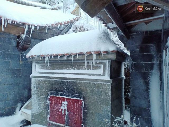 Ảnh: 28 Tết, tuyết phủ dày 60cm trên đỉnh Fansipan, đẹp như phim cổ trang - Ảnh 13.