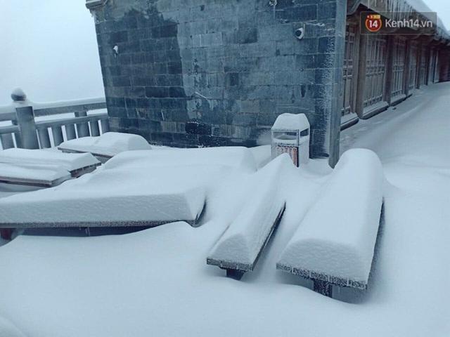 Ảnh: 28 Tết, tuyết phủ dày 60cm trên đỉnh Fansipan, đẹp như phim cổ trang - Ảnh 15.