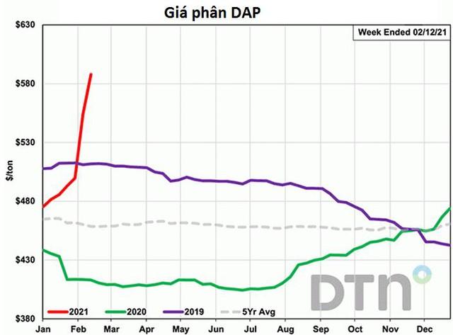 Giá phân bón thế giới tiếp tục tăng sốc ngay đầu năm - Ảnh 2.