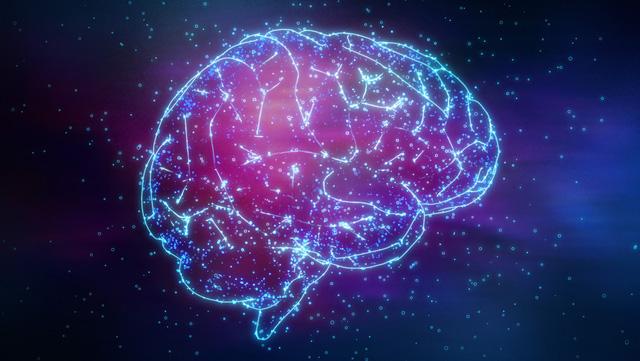 Có đúng là bộ não con người chỉ sử dụng 10% công suất: Các nhà khoa học lên tiếng đính chính sự thật - Ảnh 1.