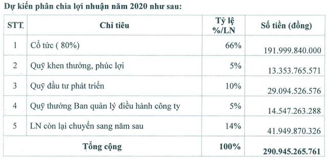 Nam Tân Uyên (NTC) dự kiến chia cổ tức 80% cho năm 2020 - Ảnh 1.
