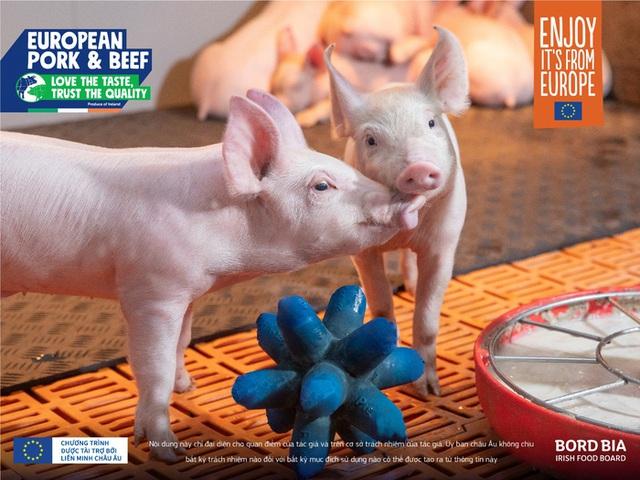 Thịt nhập khẩu Châu Âu: Cơ hội nào ở thị trường Việt Nam? - Ảnh 3.