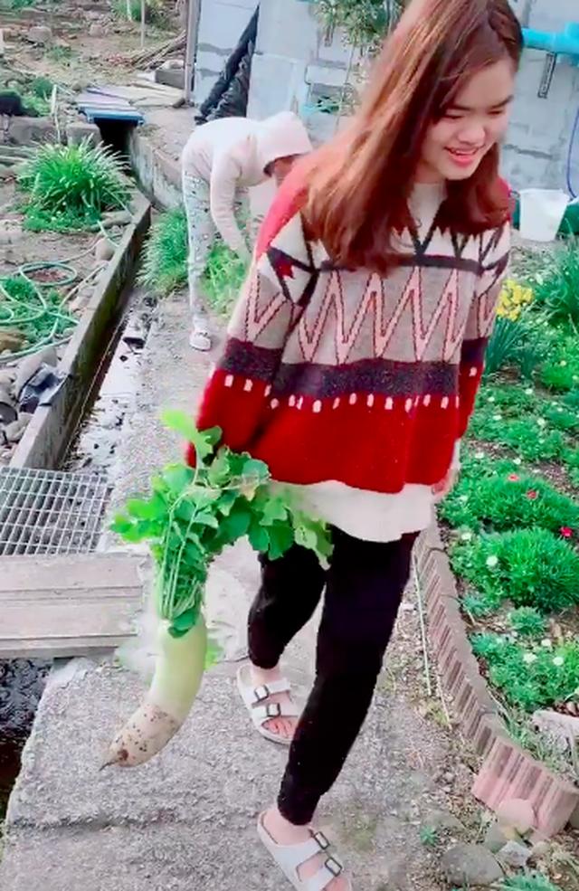 Nghịch lý thú vị: Rau của Việt Nam sang Nhật bị coi là cỏ nhưng những loại cây rẻ bèo lại được bán với giá cao trong siêu thị - Ảnh 2.