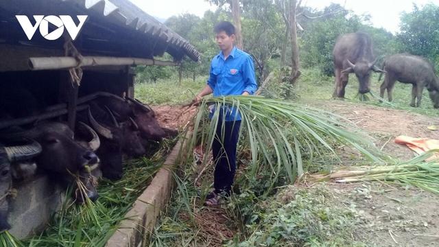 Thanh niên Bắc Kạn trồng rau, trồng nấm...thu hàng trăm triệu đồng mỗi năm - Ảnh 2.