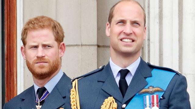 Chuyên gia hoàng gia tiết lộ sự thật chua chát về mối quan hệ giữa Hoàng tử William và Harry, công việc chung để tưởng nhớ Công nương Diana cũng bị bỏ ngỏ - Ảnh 2.