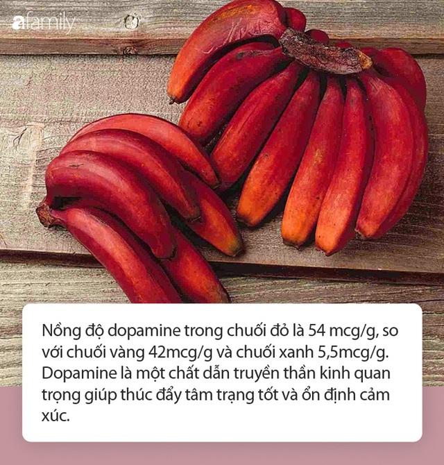 Loại chuối mới lạ có công dụng vượt trội hơn cả chuối vẫn ăn hàng ngày, cực tốt cho não bộ, tim, mắt - Ảnh 2.
