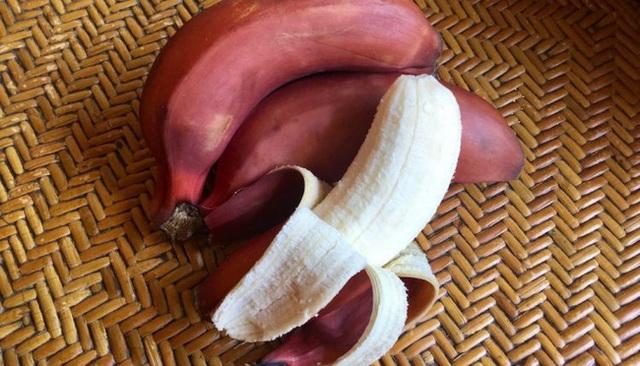 Loại chuối mới lạ có công dụng vượt trội hơn cả chuối vẫn ăn hàng ngày, cực tốt cho não bộ, tim, mắt - Ảnh 4.