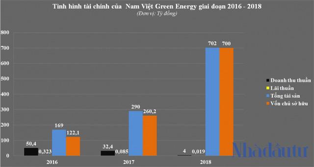 Lướt sóng loạt dự án nghìn tỷ, tiềm lực Nam Việt Green Energy ra sao? - Ảnh 4.