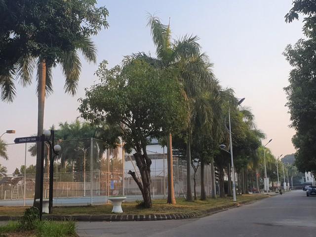 Vụ treo hợp đồng mua nhà: Cục Thuế áp dụng cưỡng chế chủ dự án Long Việt Riverside - Ảnh 1.