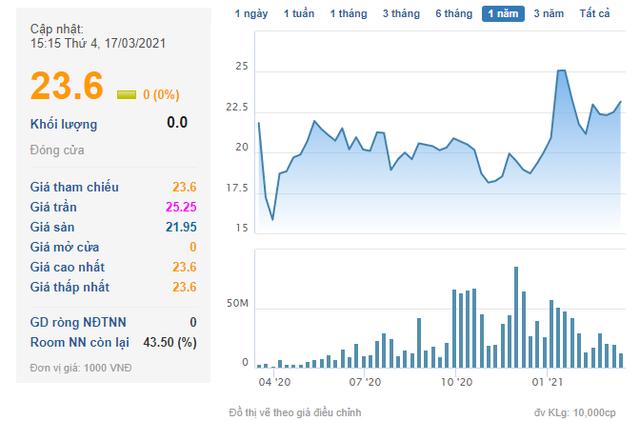 Tài chính Hoàng Huy (TCH) phát hành 21 triệu cổ phiếu chuyển đổi cho ShinhanBank và Shinhan Core Trend Global - Ảnh 2.