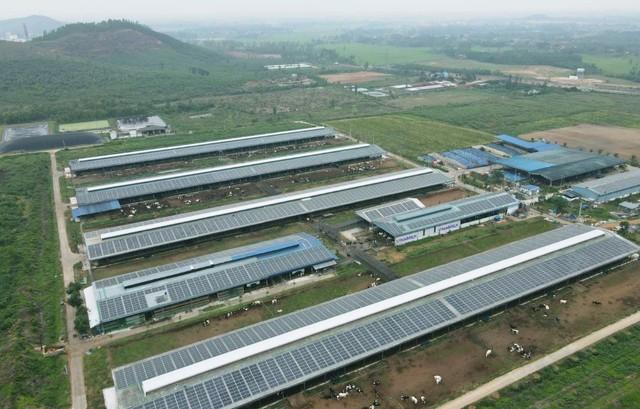 Đầu tư hệ thống điện mặt trời tại toàn bộ các trang trại, Vinamilk đẩy mạnh năng lượng bền vững - Ảnh 3.