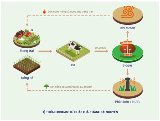 Đầu tư hệ thống điện mặt trời tại toàn bộ các trang trại, Vinamilk đẩy mạnh năng lượng bền vững - Ảnh 4.