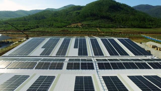 Đầu tư hệ thống điện mặt trời tại toàn bộ các trang trại, Vinamilk đẩy mạnh năng lượng bền vững - Ảnh 5.