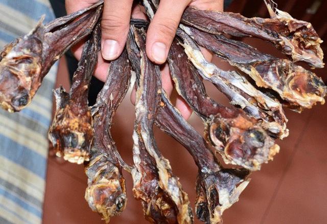 """Việt Nam có 5 loại cá được xem là đặc sản nức tiếng, nhìn thì """"sợ bỏ chạy"""" nhưng ăn rồi mới thấy cực ngon! - Ảnh 15."""