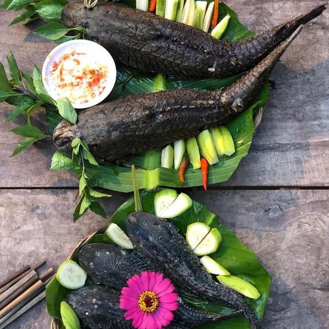 """Việt Nam có 5 loại cá được xem là đặc sản nức tiếng, nhìn thì """"sợ bỏ chạy"""" nhưng ăn rồi mới thấy cực ngon! - Ảnh 6."""
