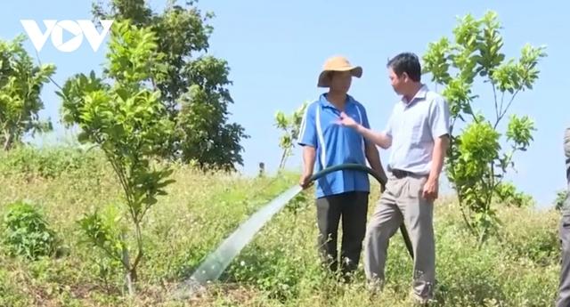 Thủ phủ hồ tiêu Chư Pưh chuyển đổi sang mô hình trồng cây ăn trái - Ảnh 2.