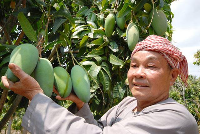 Nhiều trái cây độc, lạ dội chợ  - Ảnh 1.