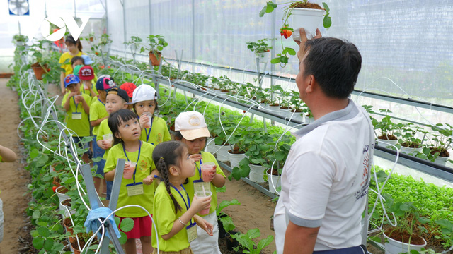 Thanh niên 9X thu tiền tỷ từ mô hình nông nghiệp sạch - Ảnh 2.